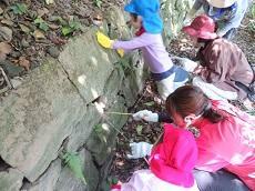 石垣の前で教員と子どもがしゃがみ込んで、カニのいる穴に糸につけた餌を入れ、菜箸でかにを掻き出そうとしている